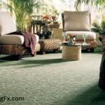 Mohawk Carpet Review