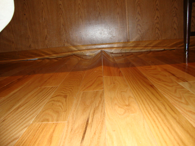 Laminate Flooring Buckled Laminate Flooring